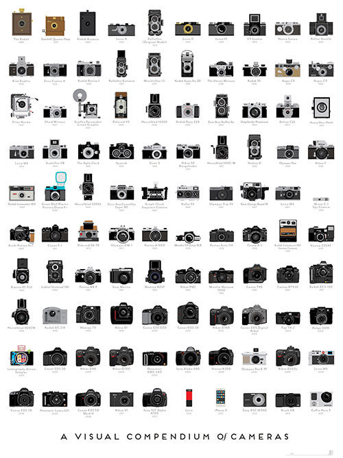 P-Cameras__500x669_A_1_1024x1024