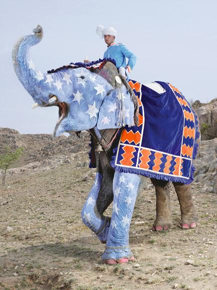 06-india-elephant-painted-blue-white-stars-580v