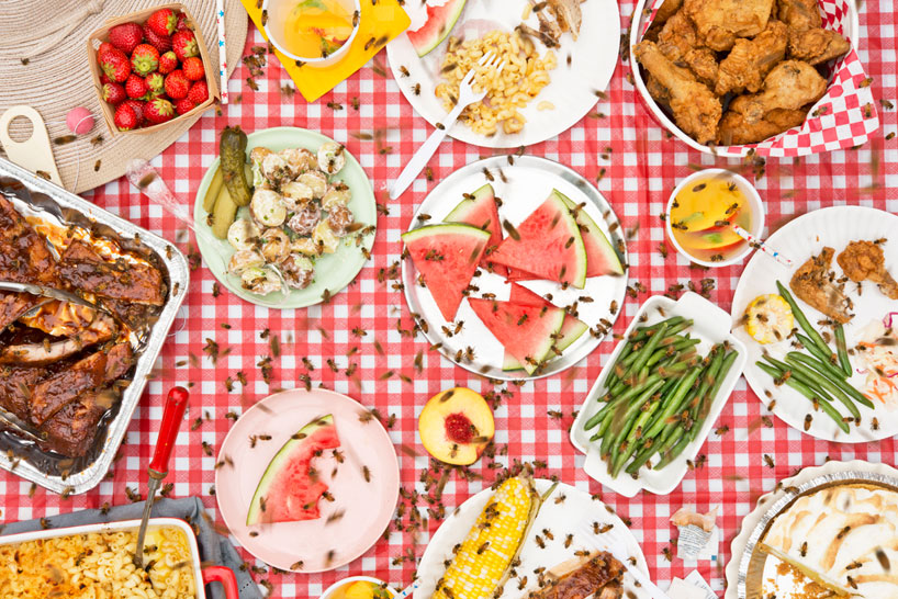 meals-interrupted-davide-luciano-claudia-ficca-designboom-20