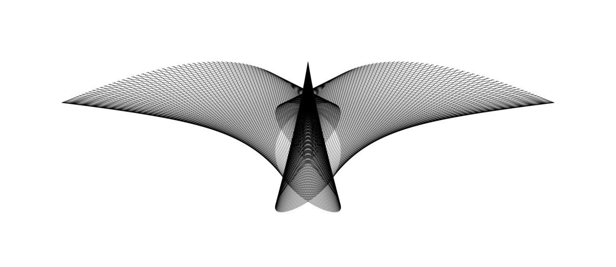 A_Bird_in_Flight