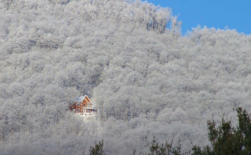 cozy-cabins-in-the-woods-2-575f9f0ae54d0__880