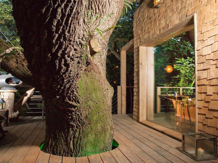 treehousewoodlandworkshop3
