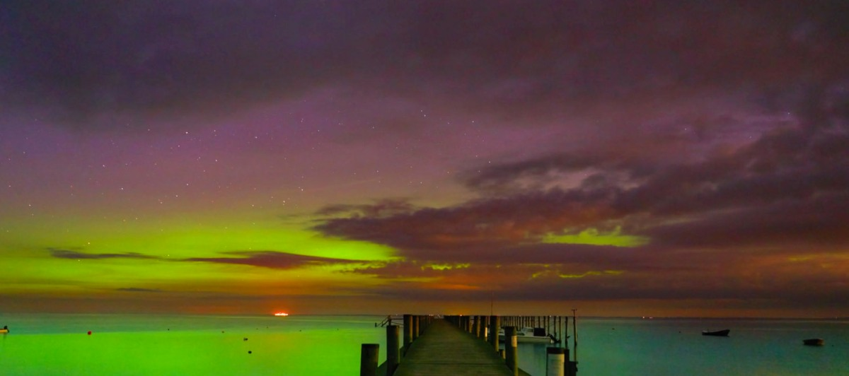 aurora-moss-and-fog-2