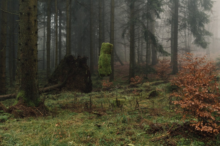 floating-forest-moss-and-fog-4