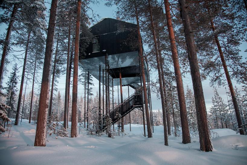 snohetta-tree-hotel-7th-room-sweden-moss-and-fog