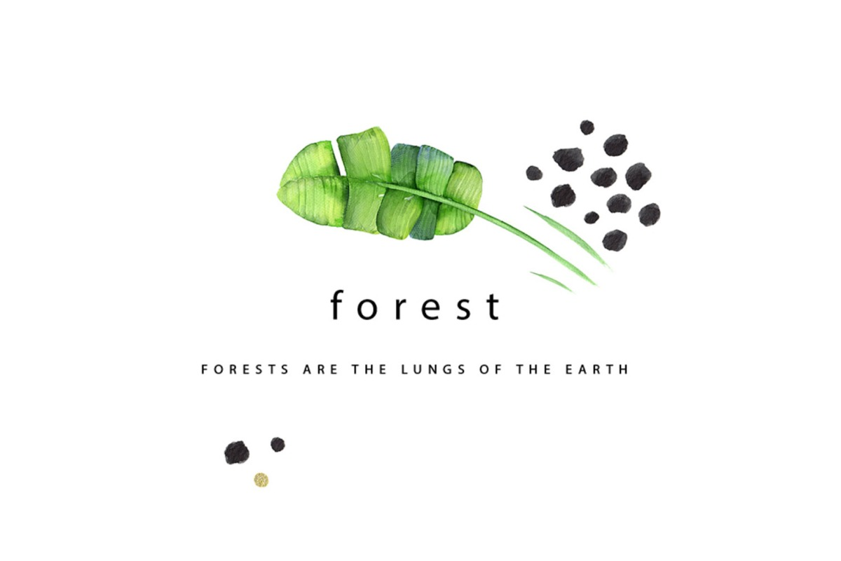 forests-lungs-moss-and-fog