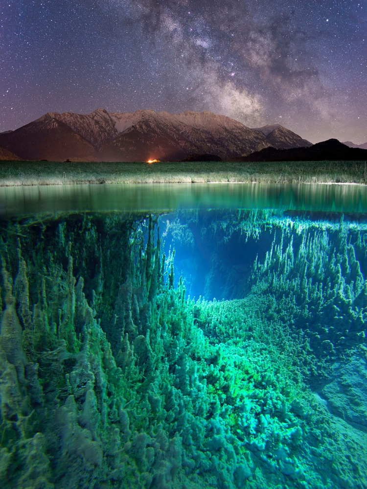 split-view-moss-and-fog