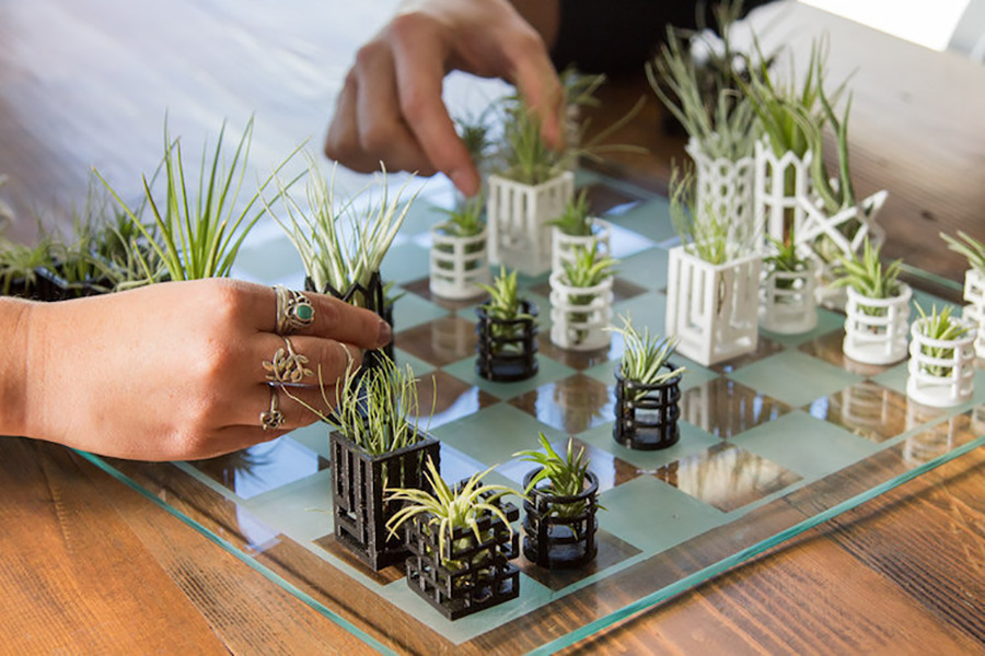 chess-planters-moss and fog 2