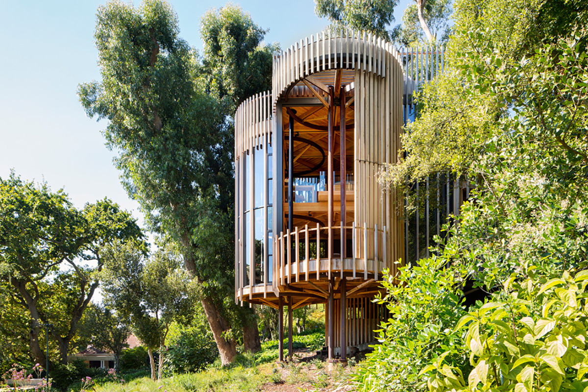 cape-town-tree-house- moss and fog 1